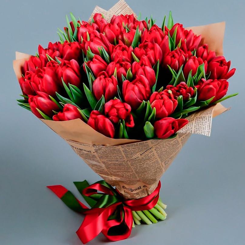 Фото 75 красных тюльпанов