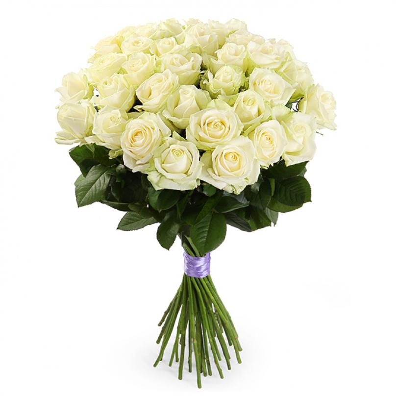 Фото 25 белых роз