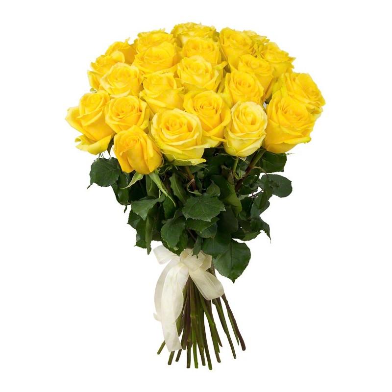 Фото 25 желтых роз