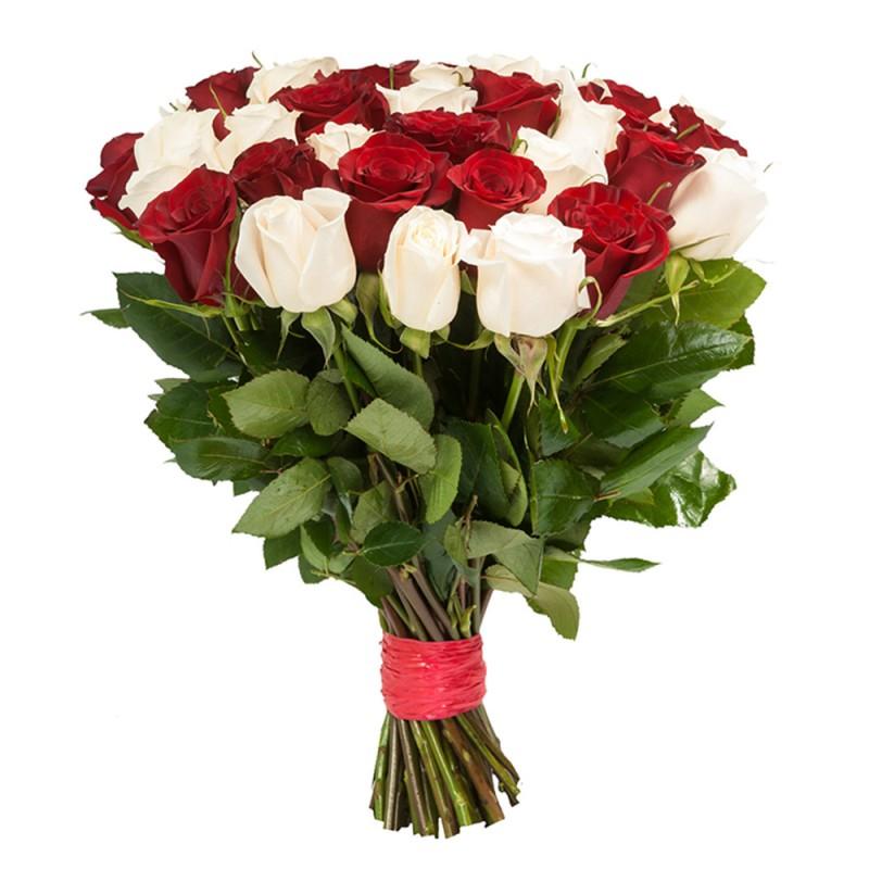 Фото 25 красно-белых роз