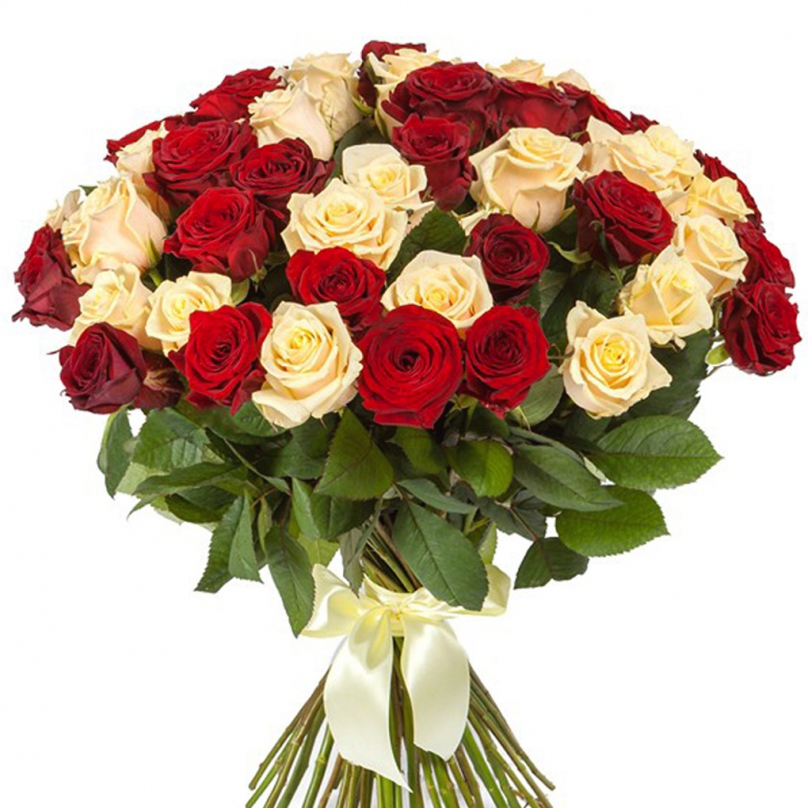 Фото 51 красно-кремовая роза