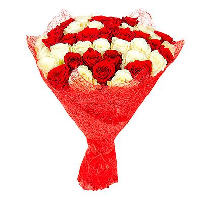 51 красно-белая роза в упаковке