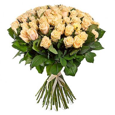 51 кремовая роза Талея