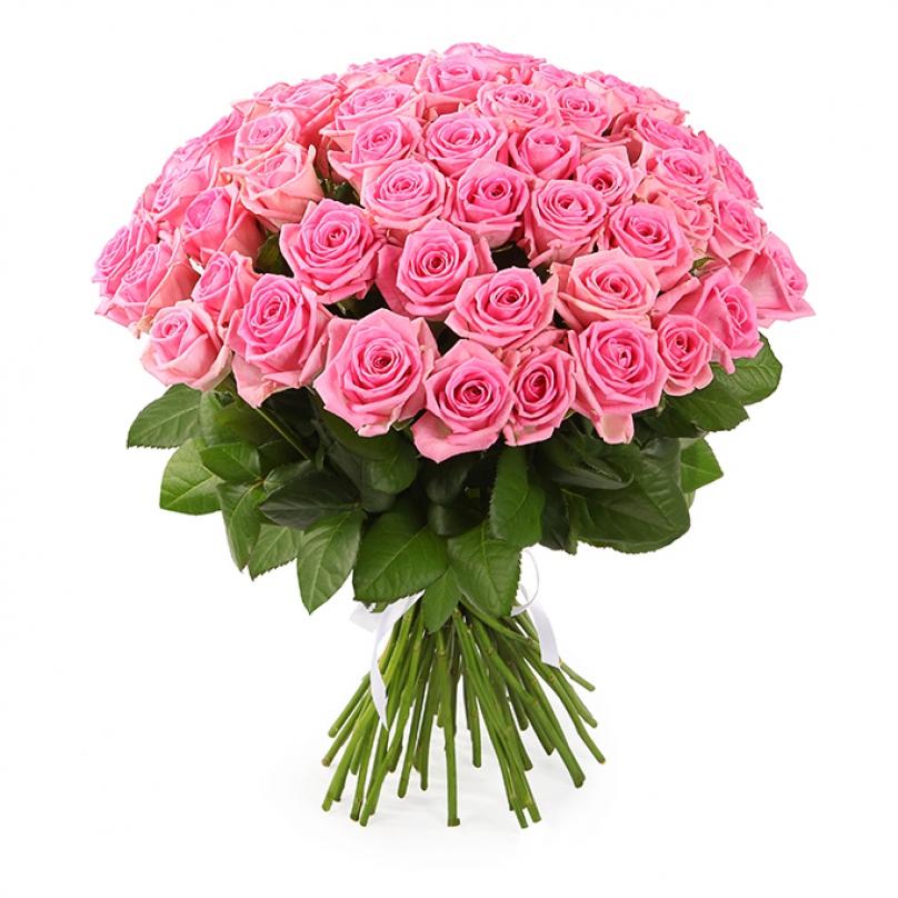 Фото 51 розовая роза Аква