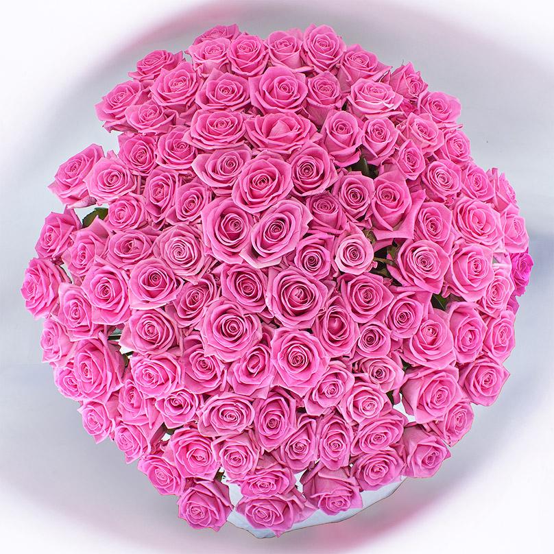 Фото 101 розовая роза Аква