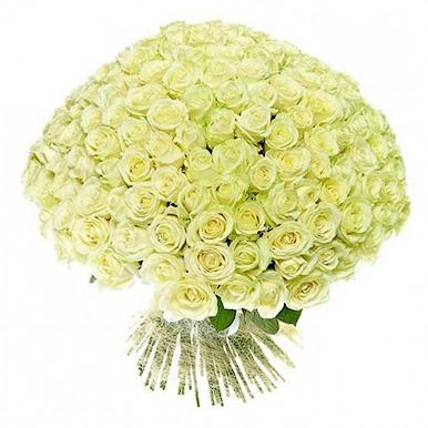 101 белая роза Аваланж