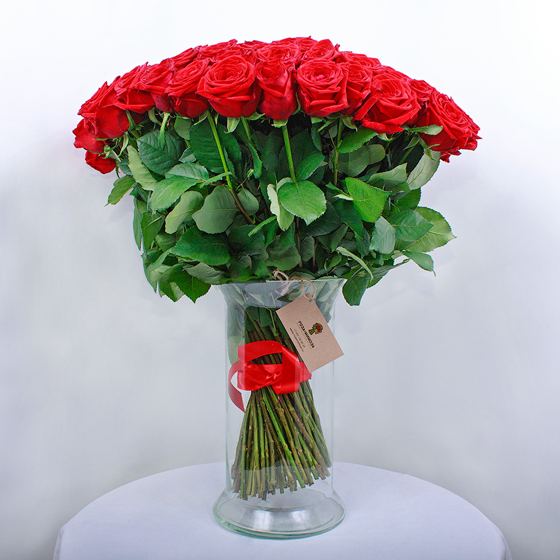 Фото 101 красная роза