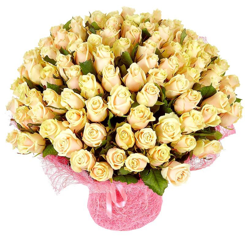Фото 201 кремовая роза