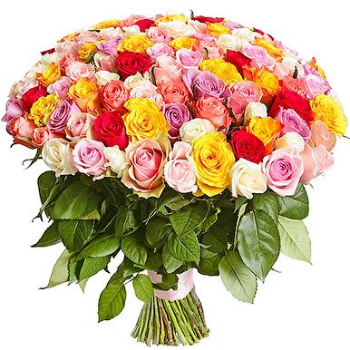 201 разноцветная роза