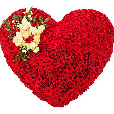 501 красная роза в форме сердца