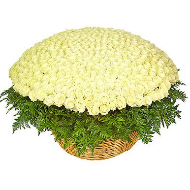 1001 белая роза