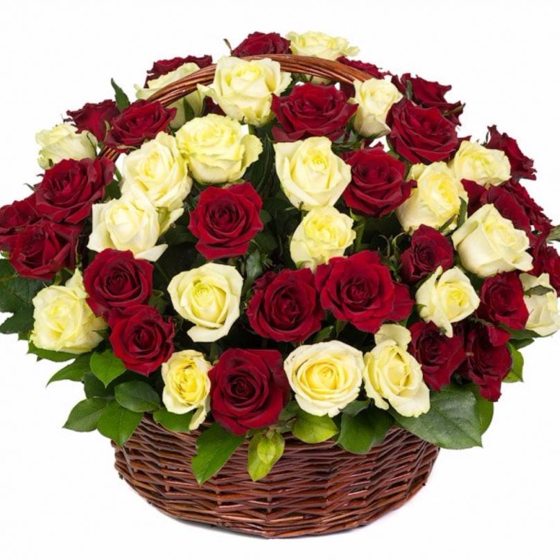 Фото 51 красно-белая роза в корзине