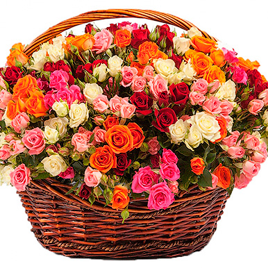 101 кустовая разноцветная роза в корзине