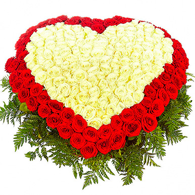 351 красно-белая роза в форме сердца