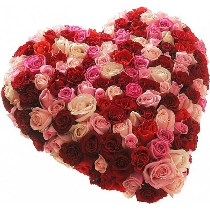 Фото 101 роза микс в форме сердца