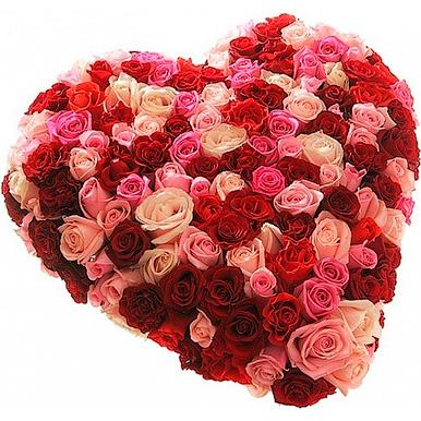 101 роза микс в форме сердца
