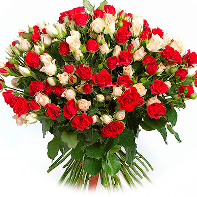 51 кремово-красная кустовая роза