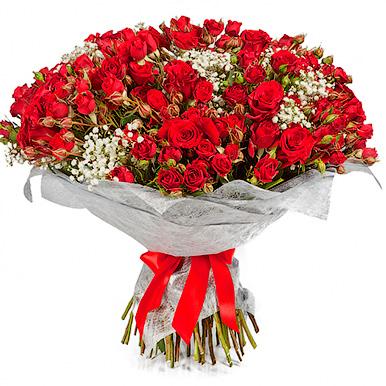 51 красная кустовая роза