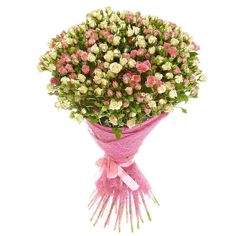 Фото 51 кустовая розово-кремовая роза