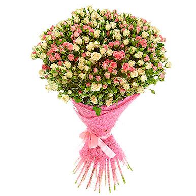 51 кустовая розово-кремовая роза