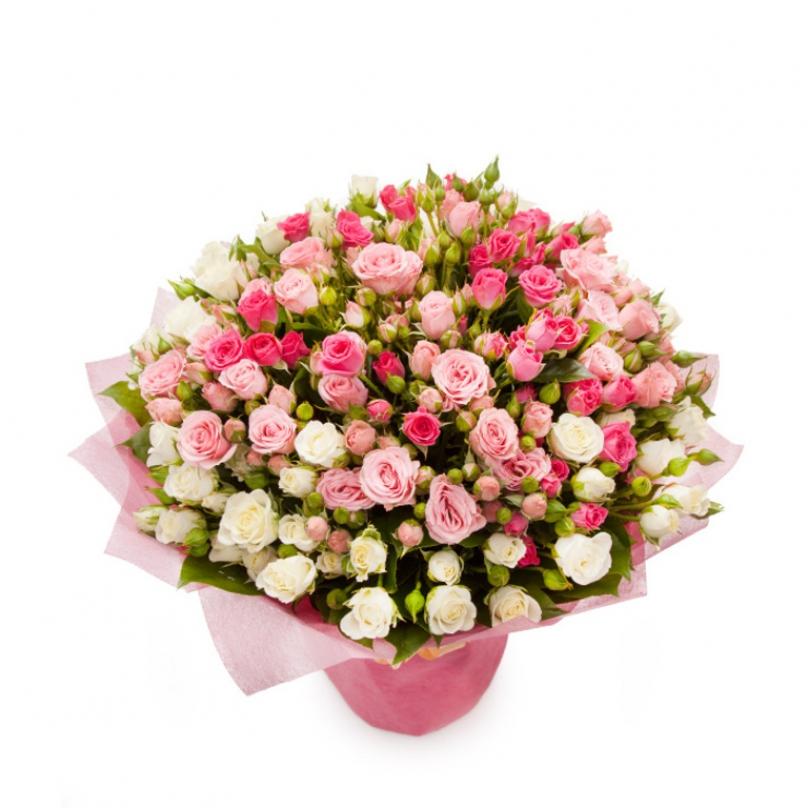 Фото 51 кремово-розовая кустовая роза