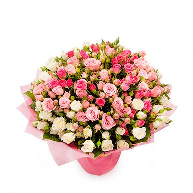 51 кремово-розовая кустовая роза