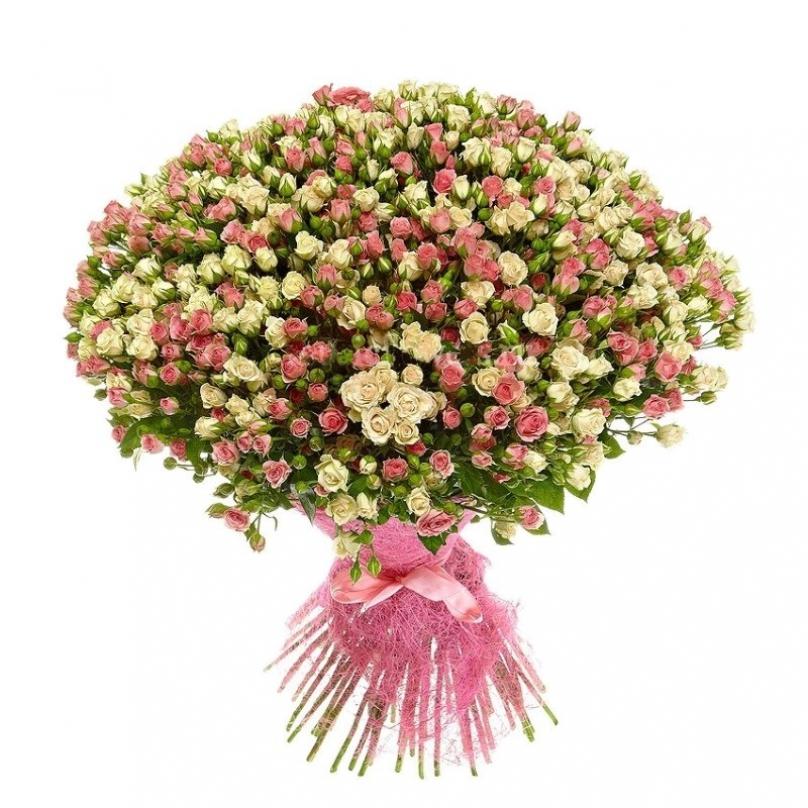 Фото 75 бело-розовых кустовых роз