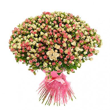 75 бело-розовых кустовых роз