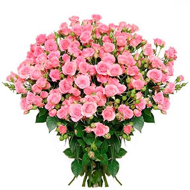 25 кустовых розовых роз