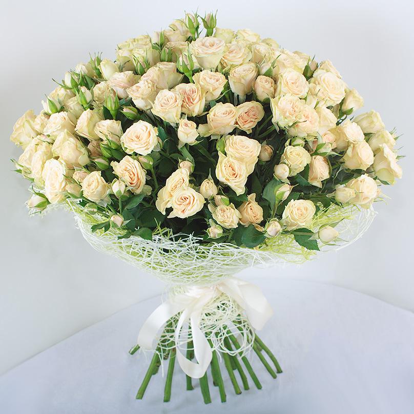 Фото 25 кустовых кремовых роз