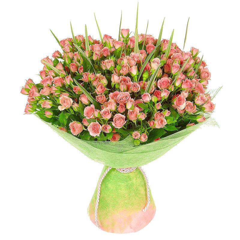 Фото 35 кустовых розовых роз с зеленью