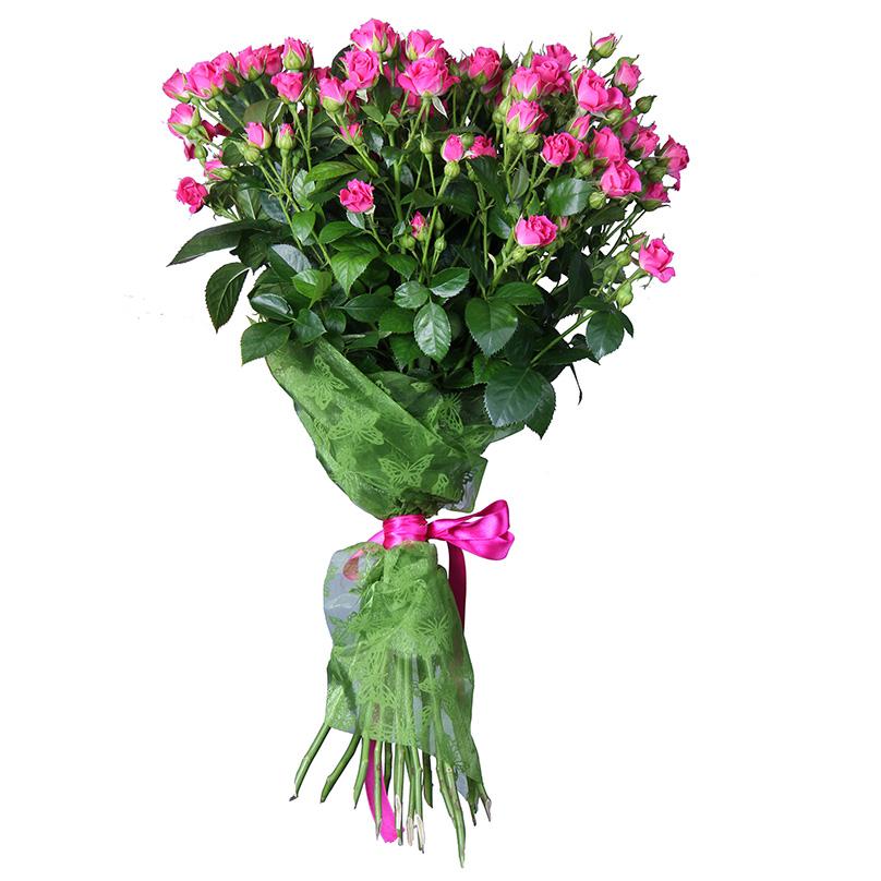 Фото 11 малиновых кустовых роз