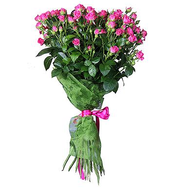 11 малиновых кустовых роз