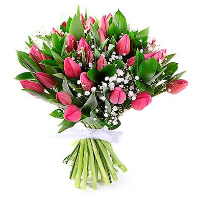 35 розовых тюльпанов с гипсофилой и рускусом