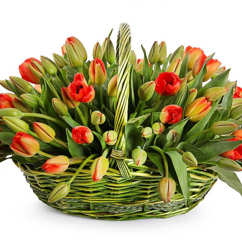 Фото 51 оранжевый тюльпан в корзине