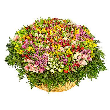 1001 тюльпан микс в корзине с зеленью