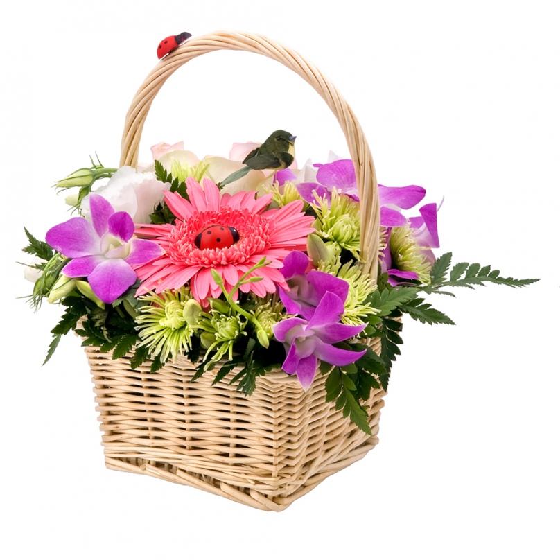 Фото Мини корзинка с герберой и орхидеей