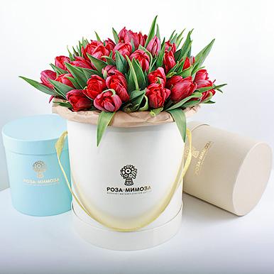 Красные тюльпаны в кремовой коробке