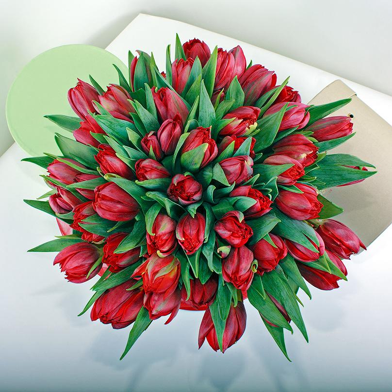 Фото Красные тюльпаны в голубой коробке