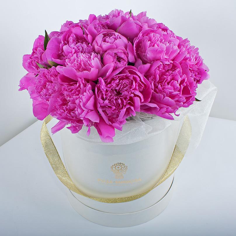 Фото Розовые пионы в белой коробке