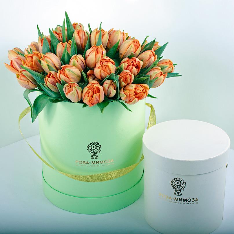 Фото 51 оранжевый тюльпан в зеленой коробке
