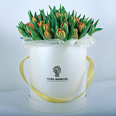 51 оранжевый тюльпан в белой коробке