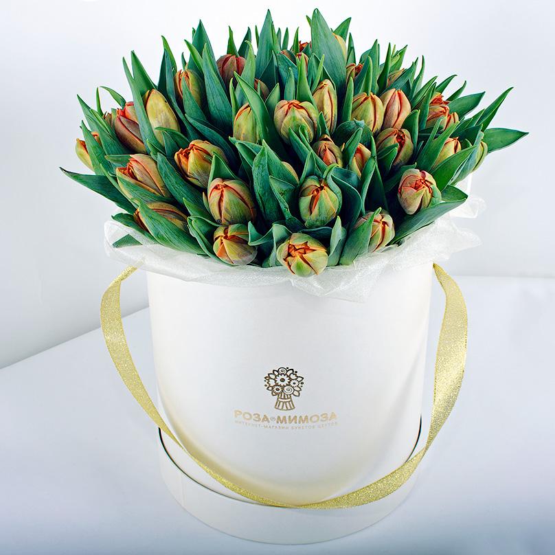 Фото 51 оранжевый тюльпан в белой коробке