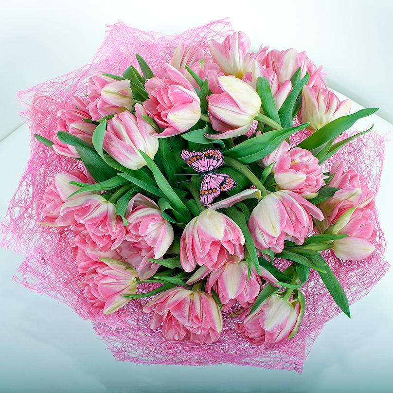 Фото 25 розовых пионовидных тюльпанов