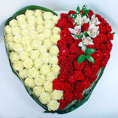 Сердце из 101 красно-белой розы с орхидеями