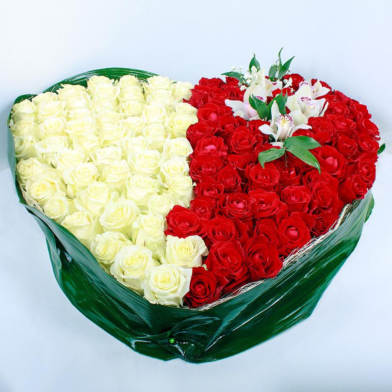 Фото Сердце из 101 красно-белой розы с орхидеями