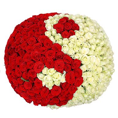 351 красно-белая роза «Инь-Янь» в корзине