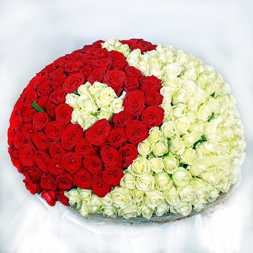 Фото 351 красно-белая роза «Инь-Янь» в корзине