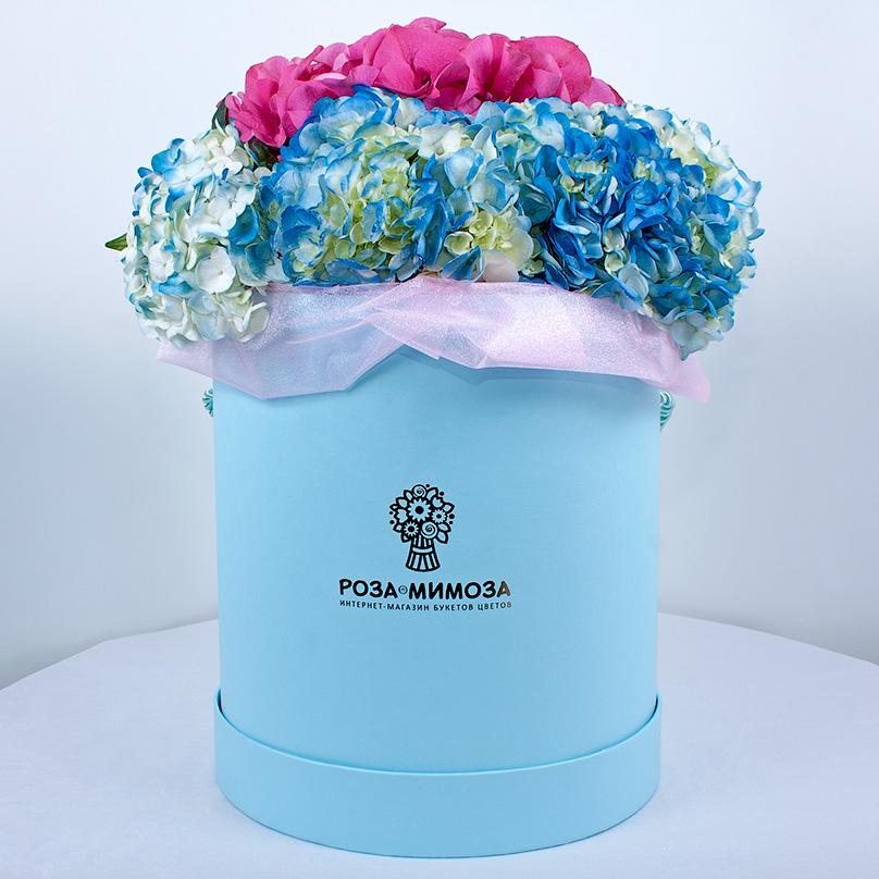 Фото Гортензия в голубой коробке