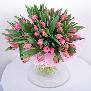49 розовых тюльпанов